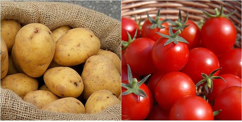 Làm hỗn hợp mặt nạ trị sẹo thâm mụn bằng cà chua kết hợp khoai tây